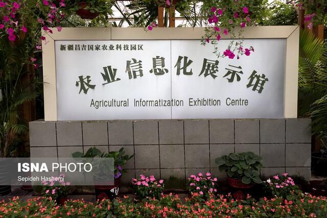 اقدامات دولت چین برای پیشرفت مالی در سرزمین اویغورها