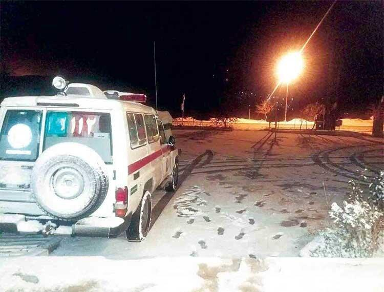 همکاری های بین المللی برای نجات زوج گردشگر خارجی در ایران ، تماس تلفنی خانواده دختر سوئیسی