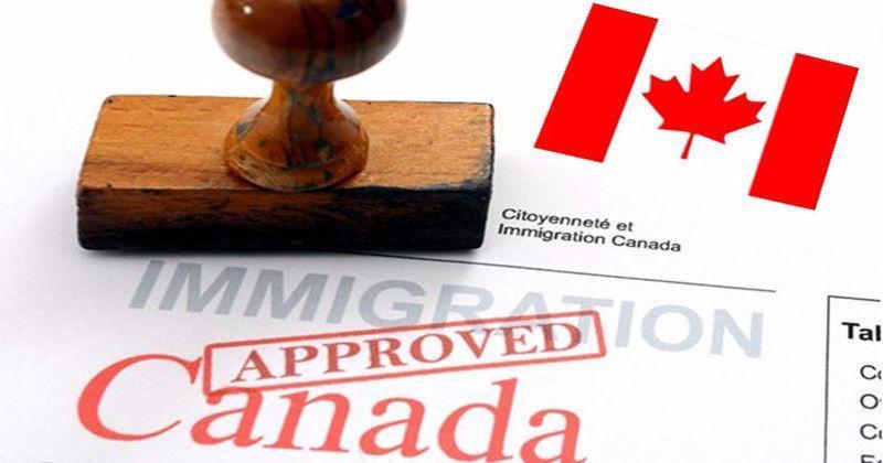 بانک RBC از کاهش چمشگیر شمار مهاجرین و تاثیر منفی آن بر بازار مسکن کانادا اطلاع داد