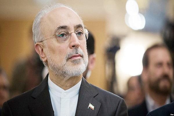 صالحی: رهبر انقلاب حرف نهایی را درباره سلاح اتمی زده اند