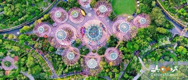 باغ خلیج ؛ مشهورترین و زیباترین جاذبه سنگاپور
