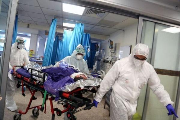564 بیمار کرونایی در بیمارستانهای کرمانشاه بستری هستند